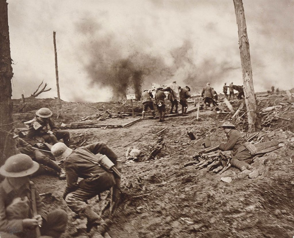 ww1 causes and life on the Life and style which is the best book on the causes of the first world war  australia and new zealand will not be overlooked in ww1 events,.
