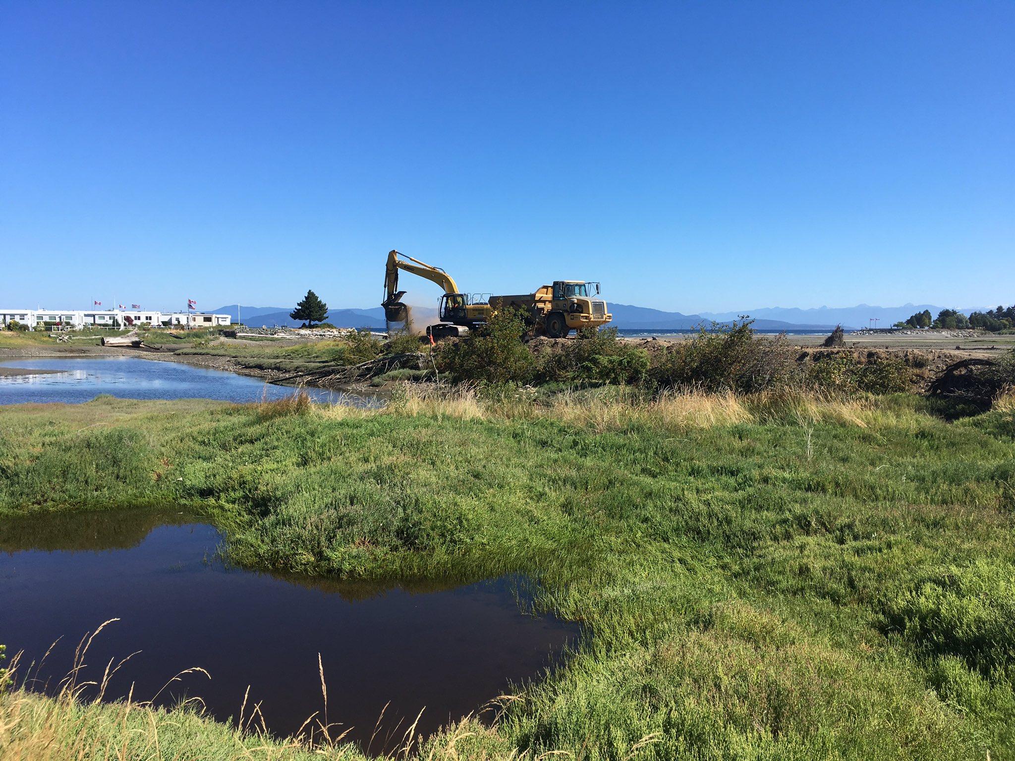 Photos of Englishman River Estuary Restoration