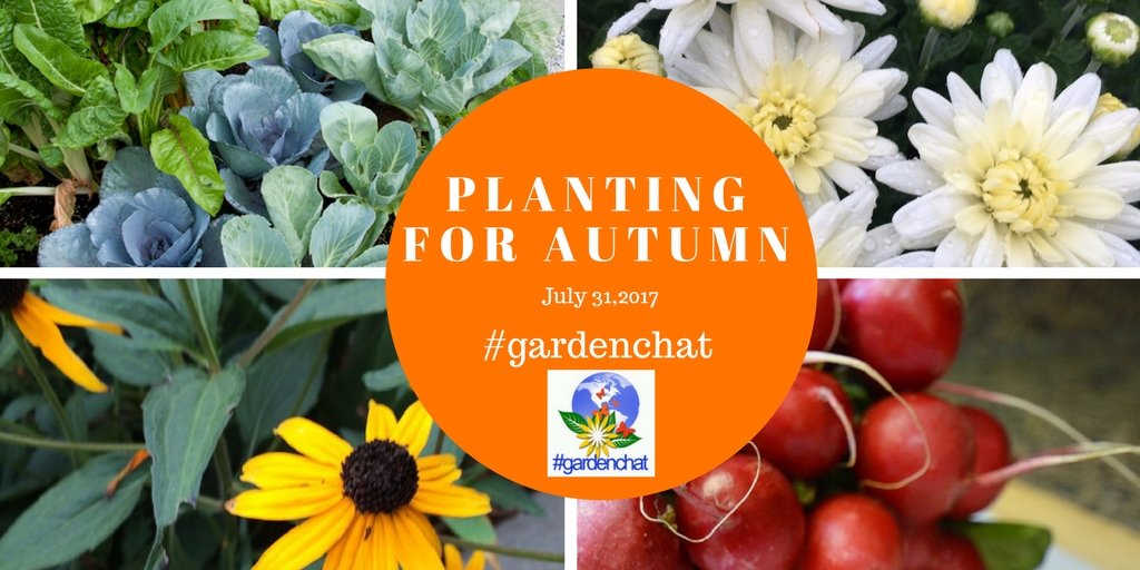 JOIN US : Planting For Autumn on Twitter #GardenChat Event https://t.co/5n4x16eMyk via @brenhaas #gardenchat https://t.co/7E9FyHfdNz