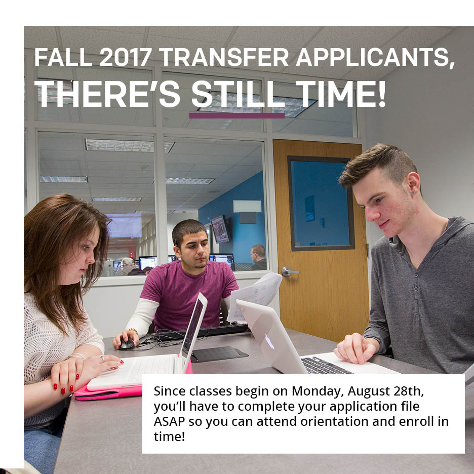 Temple Admissions On Twitter Fall 2017 Transfer Applicants See