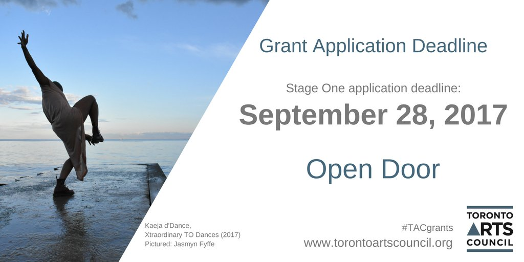 Image result for Toronto, open door funding