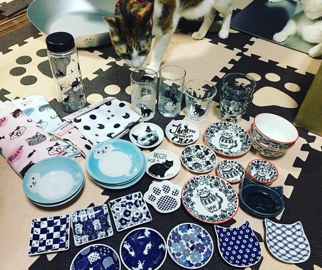 test ツイッターメディア - ヤフー??見てたら ?新しい猫柄のお皿があるらしいと言う事で ??とりあえず近所の100均へ 今日、買ったのと今まで集めた セリアの猫グッズ(*ΦωΦ*)?? 大型店へ行けばもっといっぱいありそう??  #seria  #セリア #10… https://t.co/I83mPVNqGz https://t.co/82O0TfGSA8