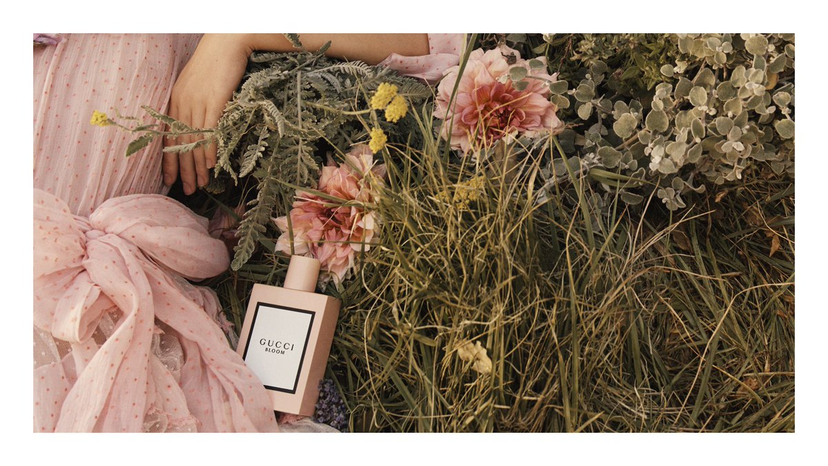 Debuting Gucci Bloom, the first women's fragrance by #AlessandroMichele for #Gucci. #InBloom https://t.co/t7qJrNMLz9