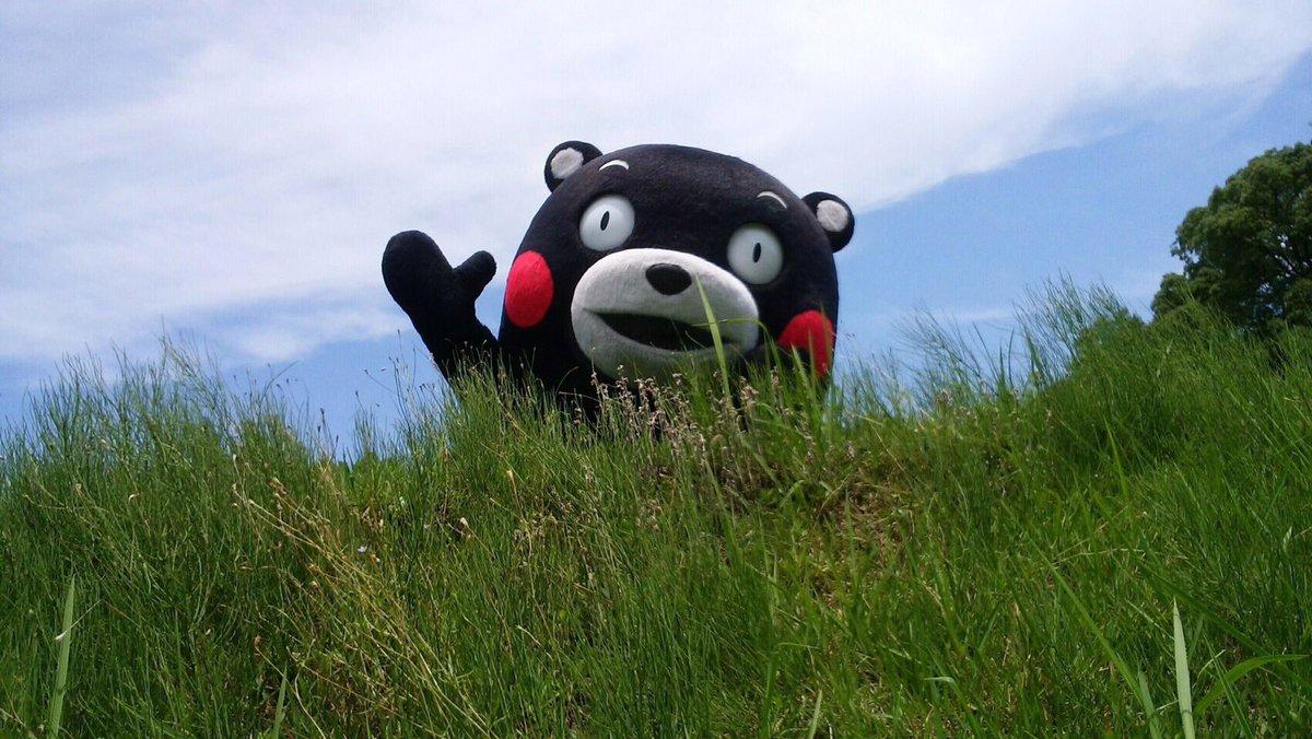 おはくま〜!今日も1日よろしくま☆