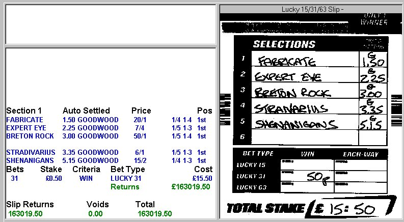 One Winner On A Lucky 31 Betting - image 11