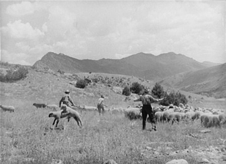 Today in History: #Colorado -Explore with #primarysources! https://t.co/oRVfphfyYF #tlchat #sschat #engchat #edchat #geography #civics https://t.co/4rz0midY3e
