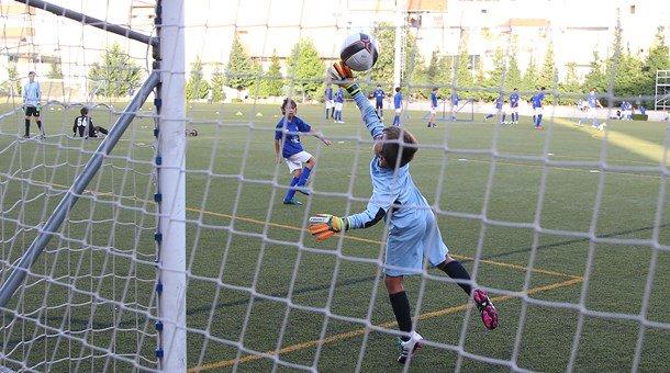 Marco de Canaveses vai ter uma escola de futebol Dragon Force ⚽⚽⚽  Informações e contactos ➡️ https://t.co/kLvi2Uoibx  #FCPorto #DragonForce