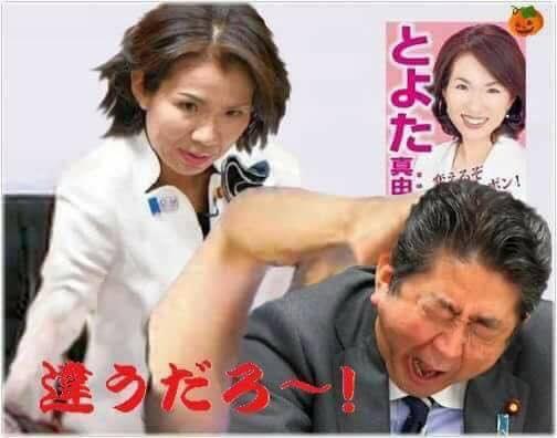 豊田真由子と安倍晋三
