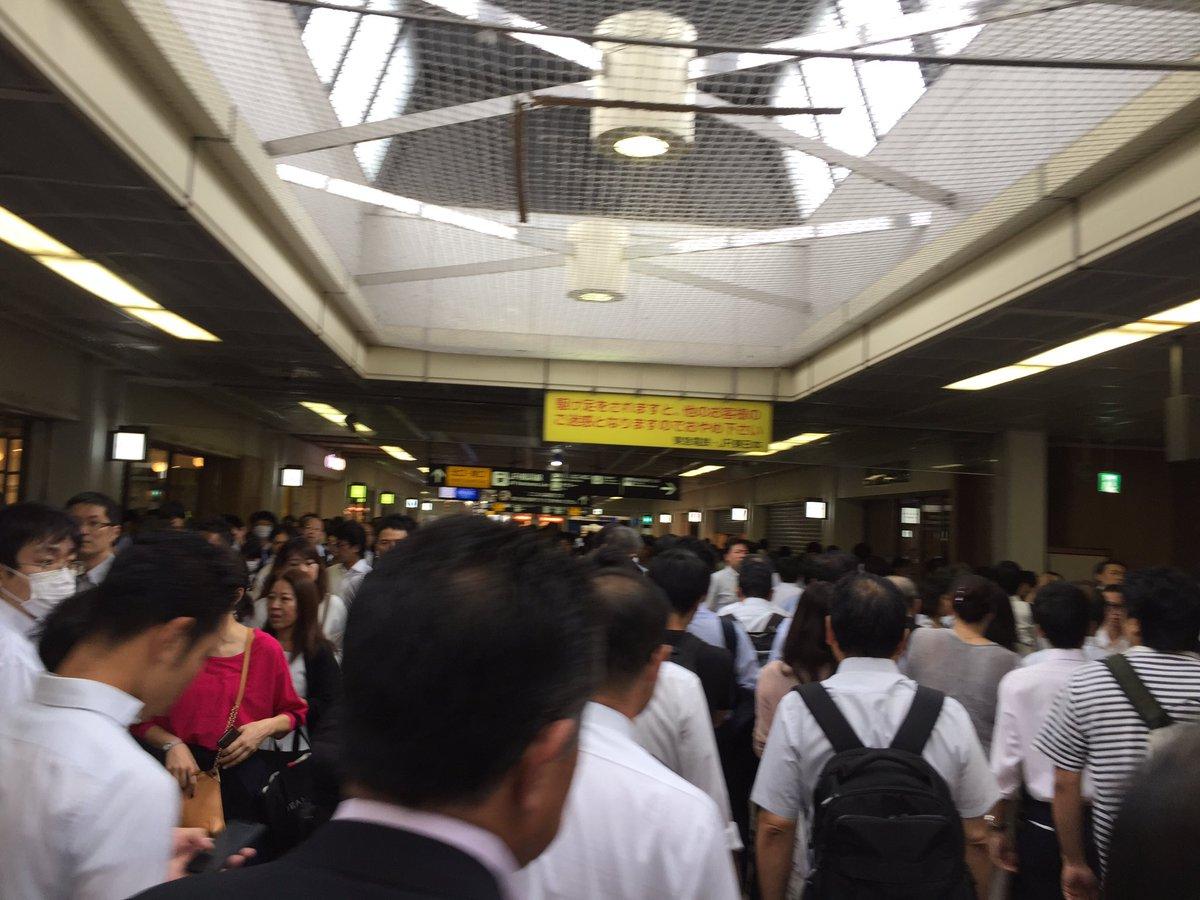 江田で信号故障のため、長津田〜あざみ野間不通。長津田大混雑。 私は新幹線ルートで東京にでる。 #田園都市線#遅延 #田都 https://t.co/ncJ30L2HNG
