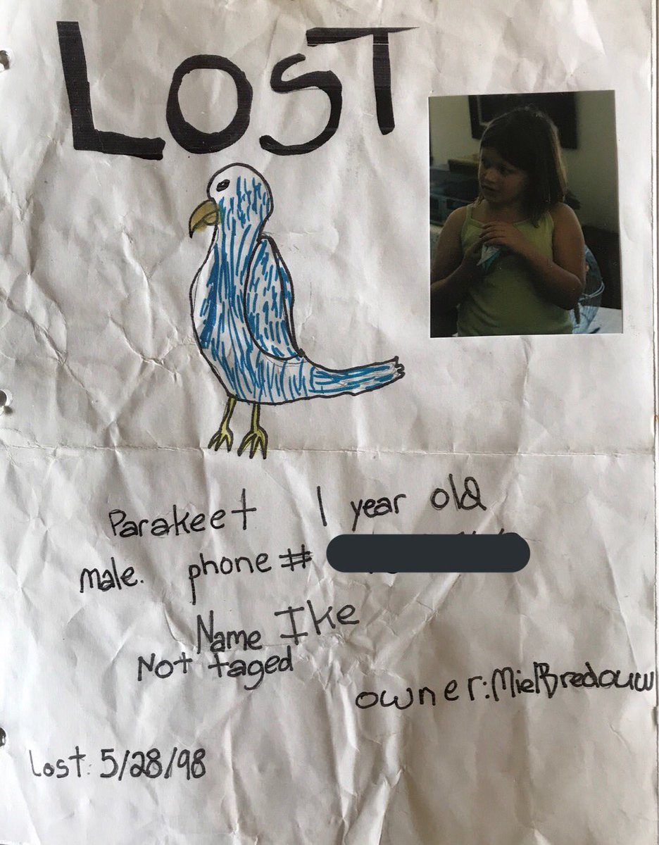 i'm not saying i'm 'famous' but i WAS on the front page of the paper for losing/finding my parakeet