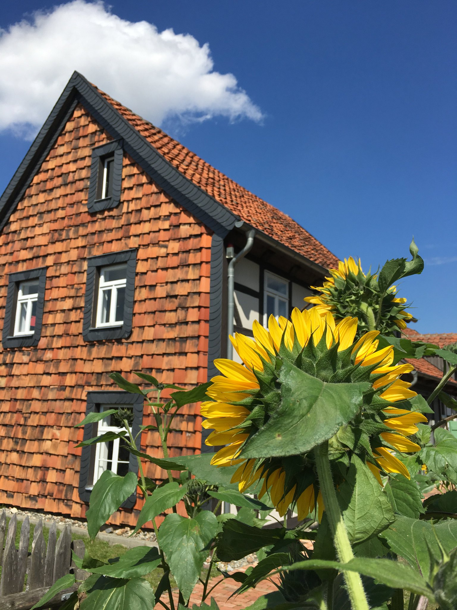 Thumbnail for Wolfenbüttel im Sommer