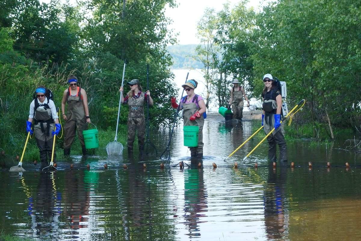 #ResearchSpotlight @uwgb students performing research that will help to inform decisions on bay health/restoration  http:// ow.ly/4bEX30e530j  &nbsp;  <br>http://pic.twitter.com/7NBOjoLuvA