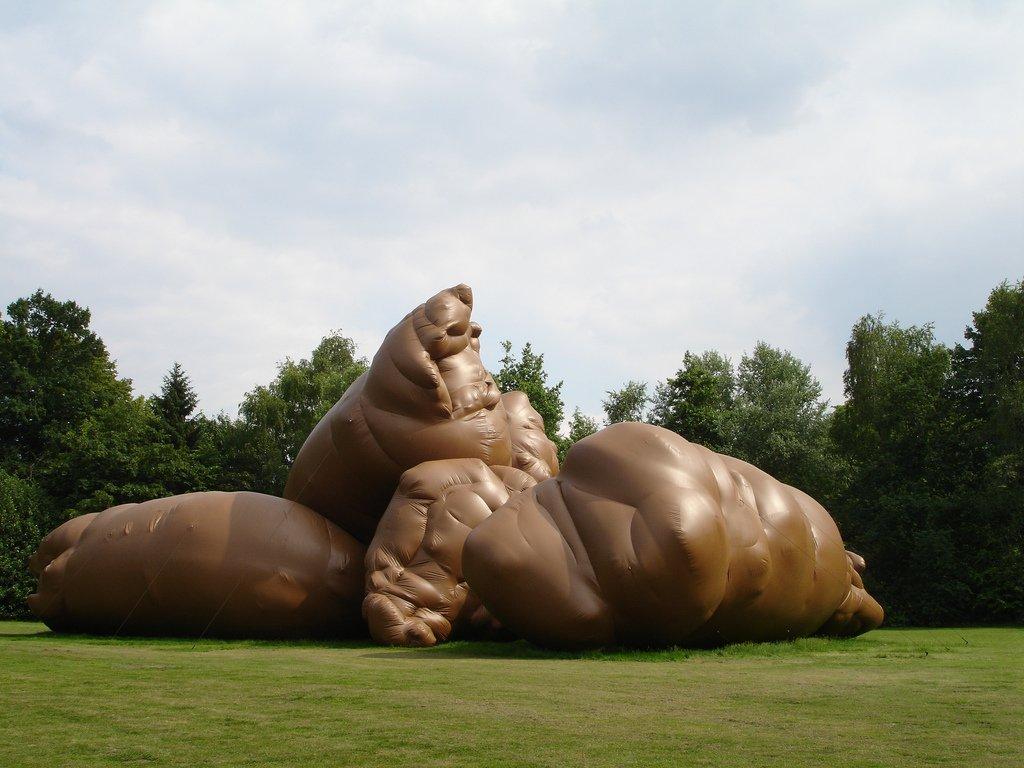 что ему самый большой катях в мире фото все