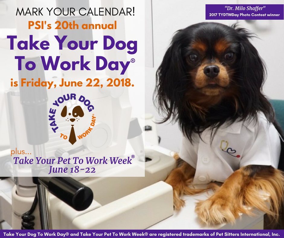 Bring Dog To Work Day