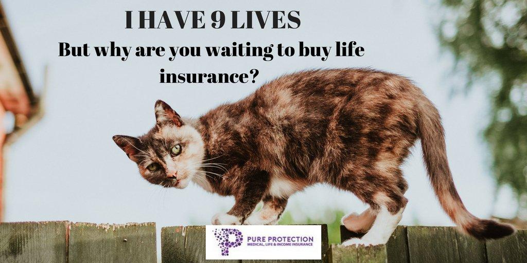 insurance quotation