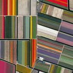 Satellite image of tulip fields in Lisse, Netherlands https://t.co/wbxJLe6mzC via @geoawesomeness