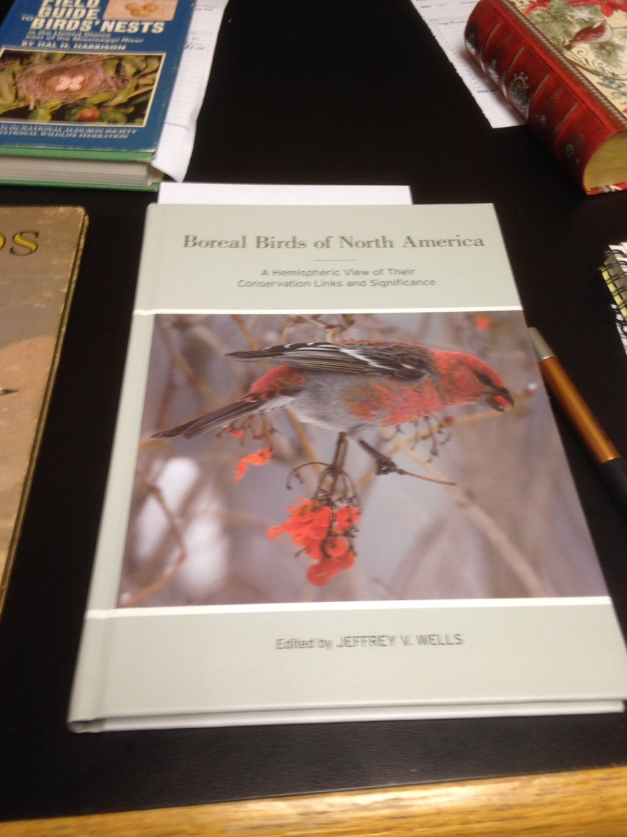 Wonder who ended winning the bid for Boreal Birds of North  America at #AOSSCO17 meeting? @AOS_SCO_2017 @AmOrnith @OrnithSci @DUCBoreal<br>http://pic.twitter.com/hO0bcf9jfF