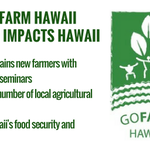 3 Ways @GoFarmHawaii positively impacts Hawaii #impinv #GoFarmHawaii #HIag https://t.co/UWrGCxuybz