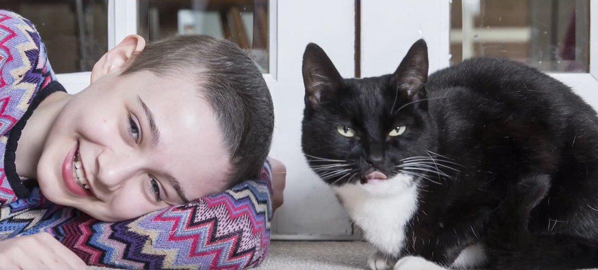 Cat genie instructions