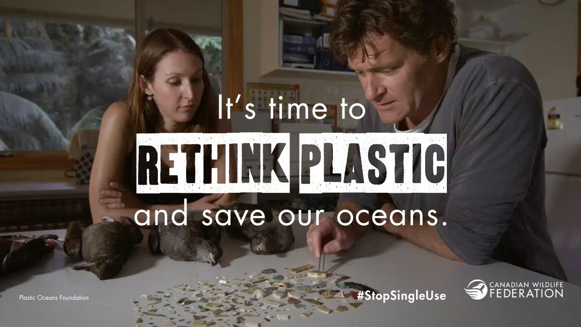 RT @PlasticOceans: A message from us and @CWF_FCF. #stopsingleuse #plasticpollution https://t.co/43eervy6dF
