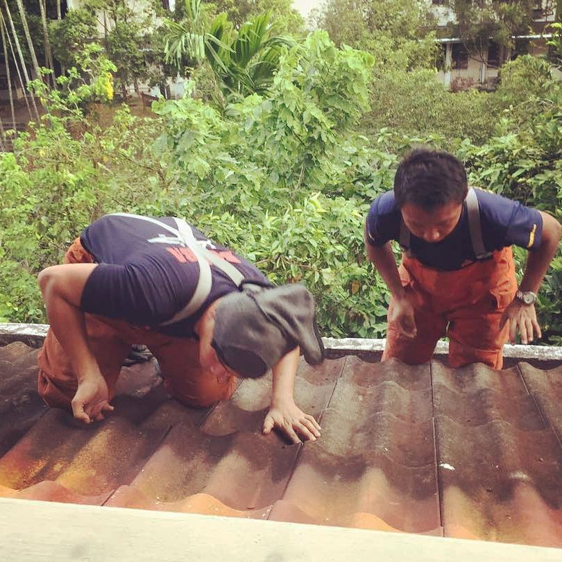 Firemen saved a kitten that fell into a gutter pipe from level 4 and stuck at the elbow down at level 2 at UTM.