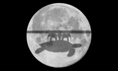 Khalil Sehnaoui On Twitter Lunar Eclipse The Flat Earth Version
