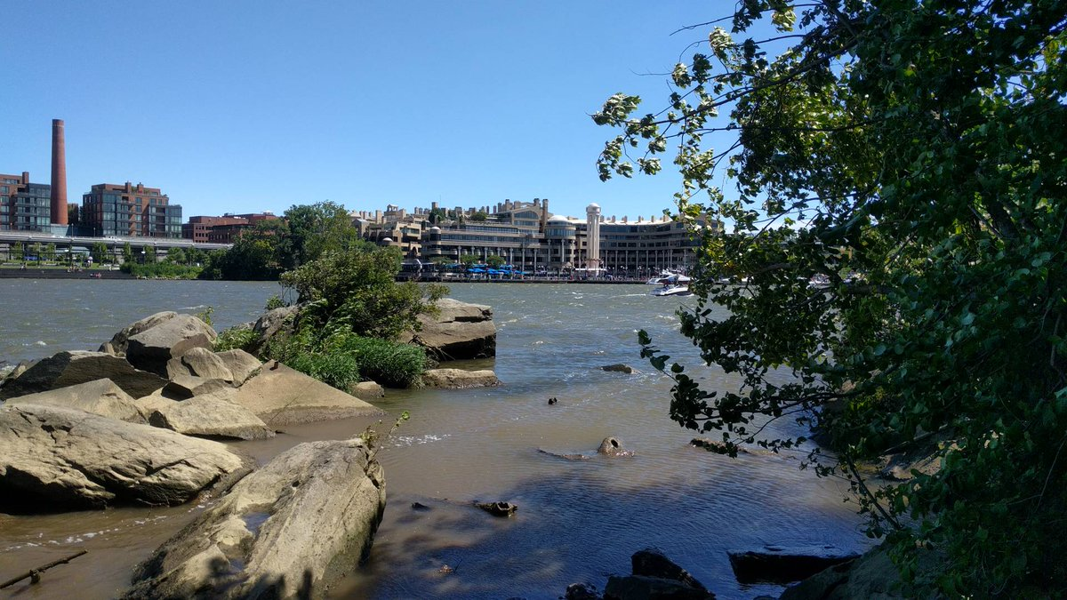 Looking over at the Georgetown harbor from Roosevelt Island #roosevelt #dc #washington #georgetown #rooseveltisland #washingtondc #firsthand<br>http://pic.twitter.com/AbZhFppbkL