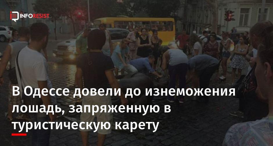 фото всей улицы свободы