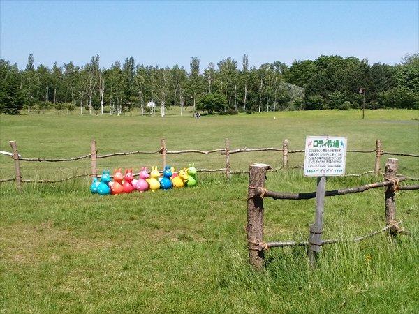 ロディ牧場を見れば、子供の個性がわかっちゃう?ww並べ方が色々でかわいいww