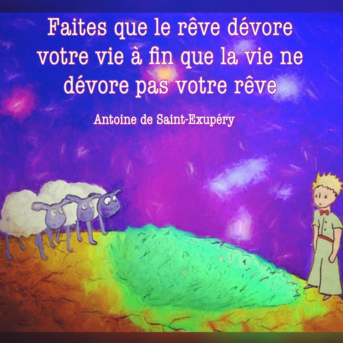 Make your dream devour your life so that life doesn&#39;t devour your dream  #lepetitprince #quoteoftoday #citationdujour <br>http://pic.twitter.com/pNPgEOEBTu