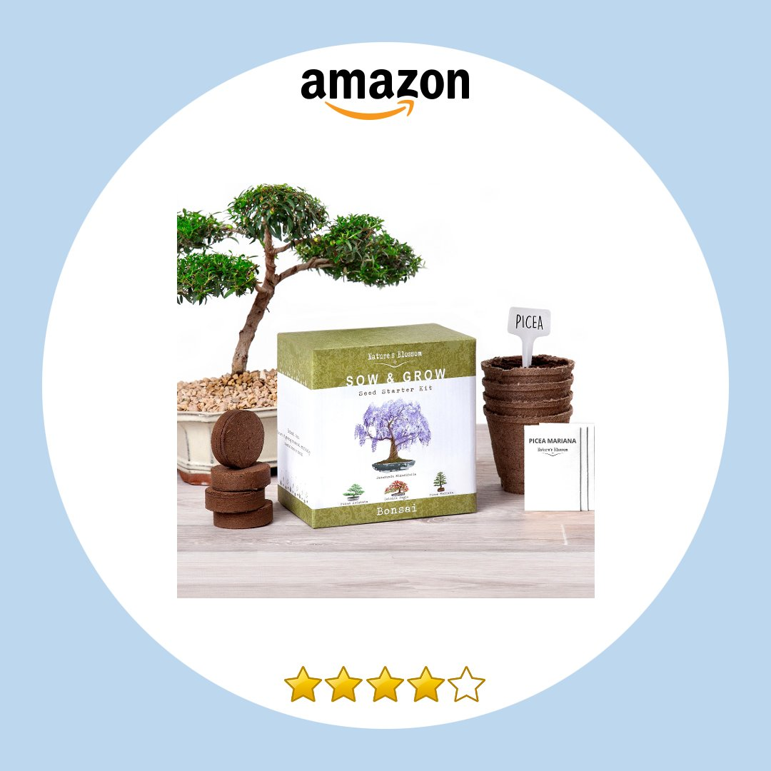 Amazon On Twitter Nature S Blossom Bonsai Tree Kit Grow 4 Bonsai Trees From Seed Complete Set With Organic Https T Co J1bqtsc2he
