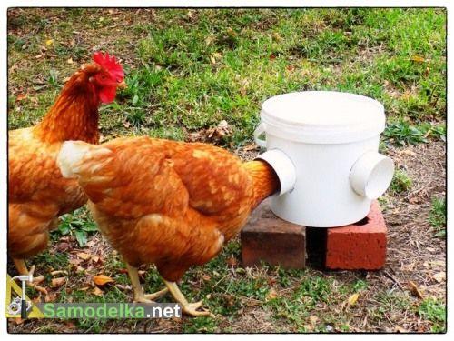 инструкция по мытью овощей в общепите