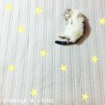 猫の寝相アートが可愛すぎる!足の短さも可愛さのポイント?