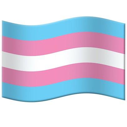Transgender Pride Flag Emoji Dialogue - Part 1