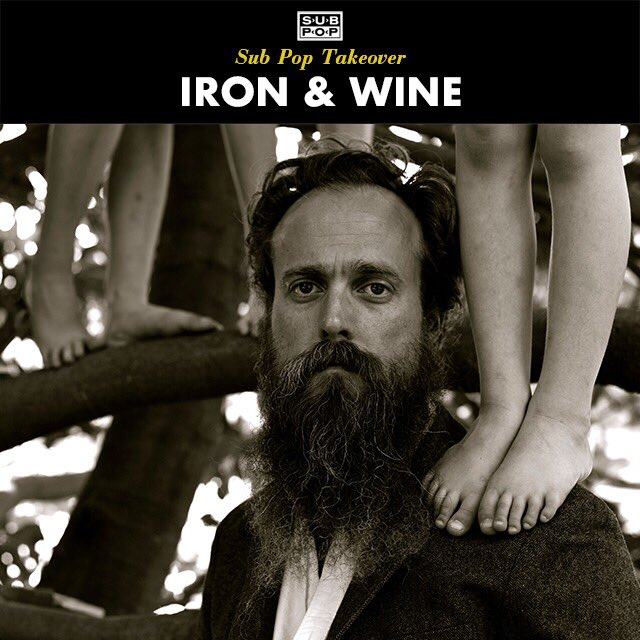 Image result for iron & wine meme