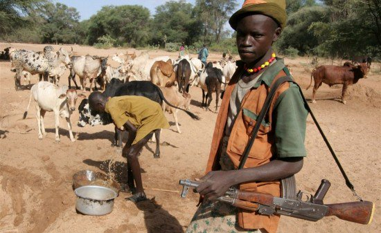 Miyetti Allah Cattle Breeders Association of Nigeria (MACBAN) says it will challenge the anti-grazing laws introduced by some state govts in court.