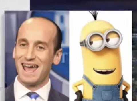 Thank u @iamjohnoliver @LastWeekTonight   #stephenmiller or #Minion ? https://t.co/lq2Hdd4YgC