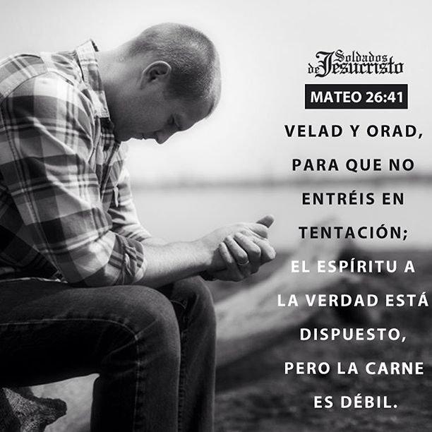 RT @carlososoriov00: Velad y orad para no entrar en tentación ! #FelizLunes https://t.co/3SBewqCTqJ