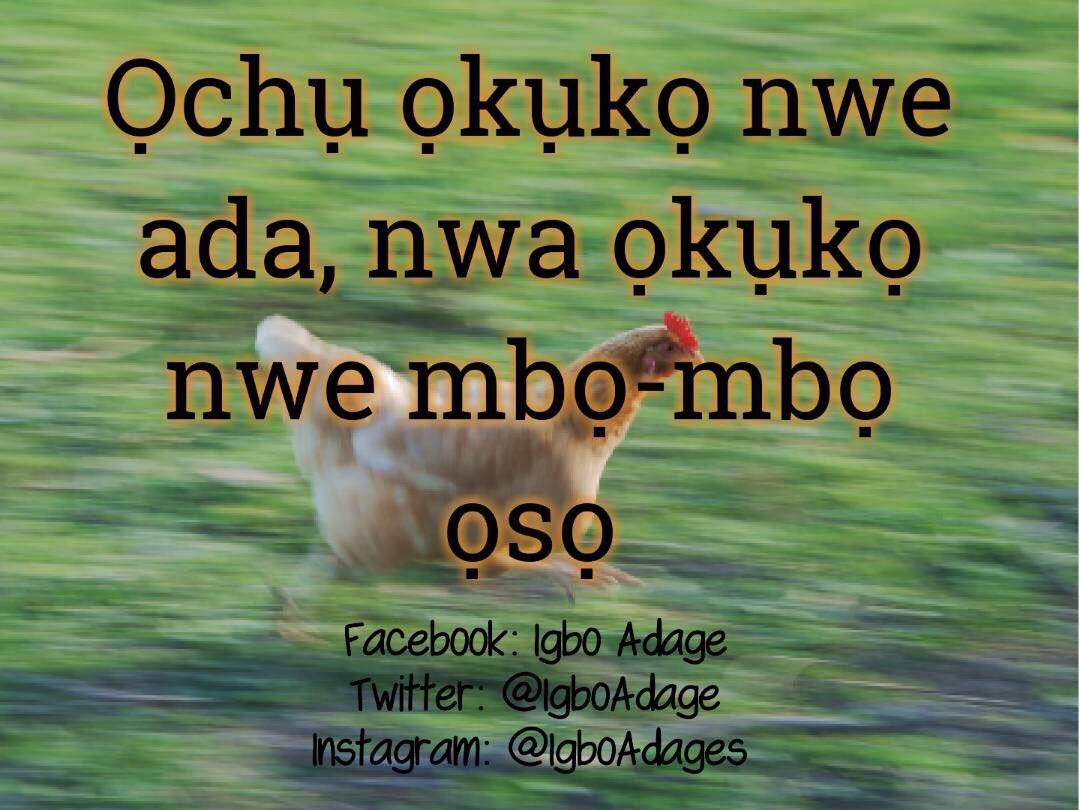 Igbo Adage on Twitter: