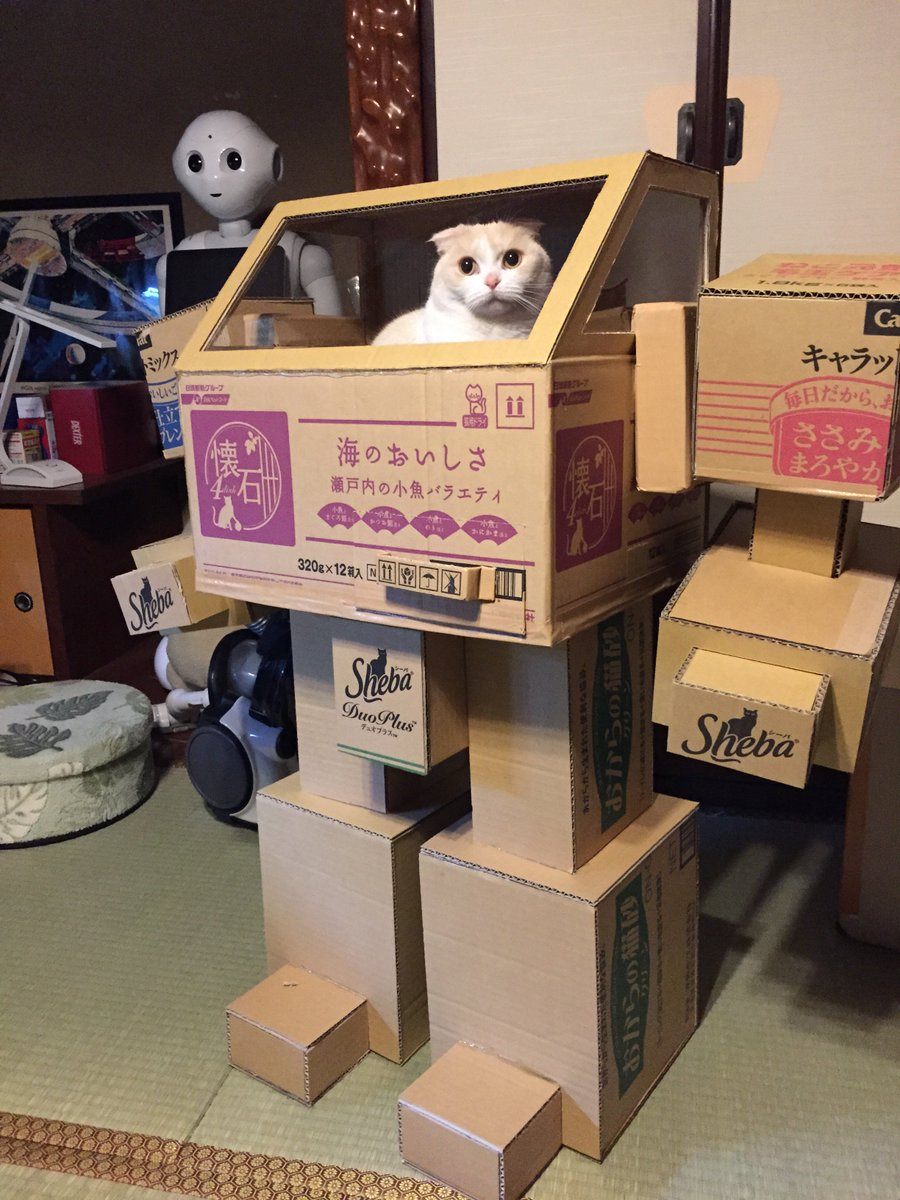 A Cardboard Mecha for a Cat