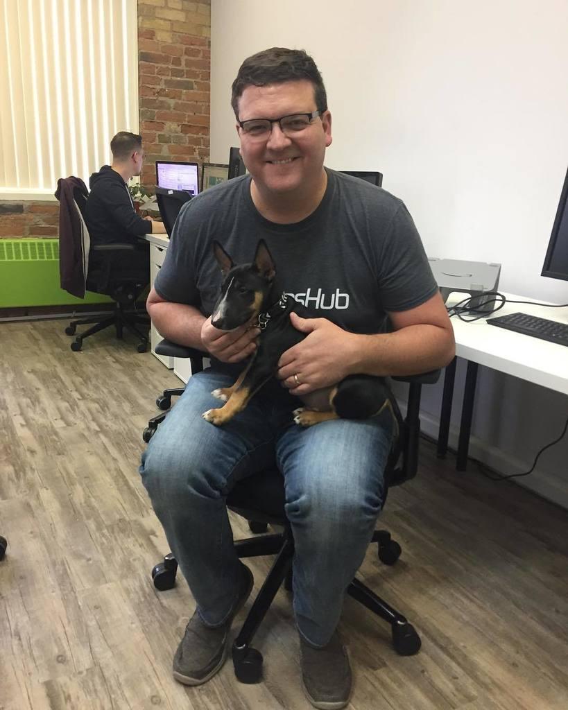Dogs are better.  Happy #internationalcatday ! #bowwow #dogsofinstagram #officedog  http:// ift.tt/2vfRofn  &nbsp;  <br>http://pic.twitter.com/GvZMwAQdx9