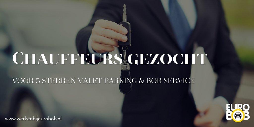 Voor minimaal 2 shifts per week zijn we op zoek naar goede studentchauffeurs. Kijk op http://www.werkenbijeurobob.nl voor meer informatie.