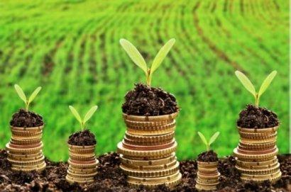 Плата за землю скачать реферат