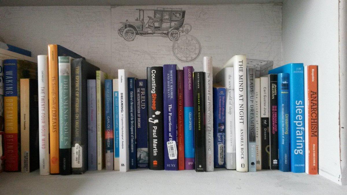 Dream Book Shell, what dream Shelp in a dream to see 68