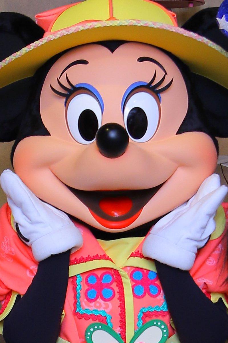 見にくくて申し訳ないんだけど、ミニーのお鼻もマットになってる((((;゚Д゚)))) #TDR_now