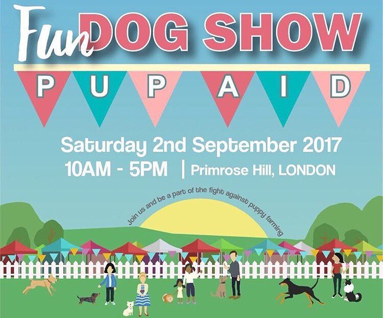Are you coming to the #fun #dogshow in #primrosehill ? It&#39;s for a great cause, plus you&#39;ll get to kiss me for hours!! #pupaid2017 #london <br>http://pic.twitter.com/LThABfkL1g