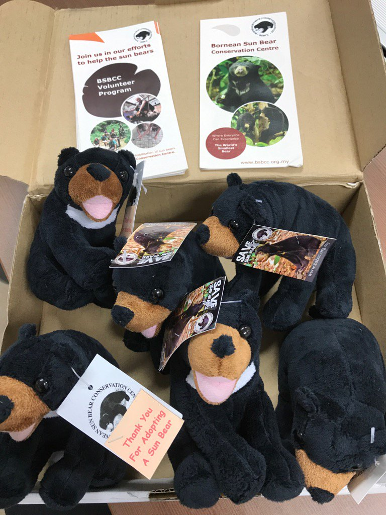 When a box of adopted sun bears arrive at work, you know your job is awesome! @UWCSEA_East #service @BSBCC_SunBear<br>http://pic.twitter.com/NoG5HYpMDl
