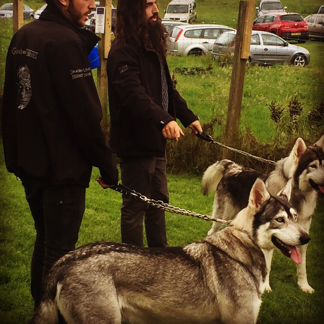 @DogHourNI it was fab to see the #GameOfThones Huskies last weekend @BG_DoggyFunPark. #cool #doghourni