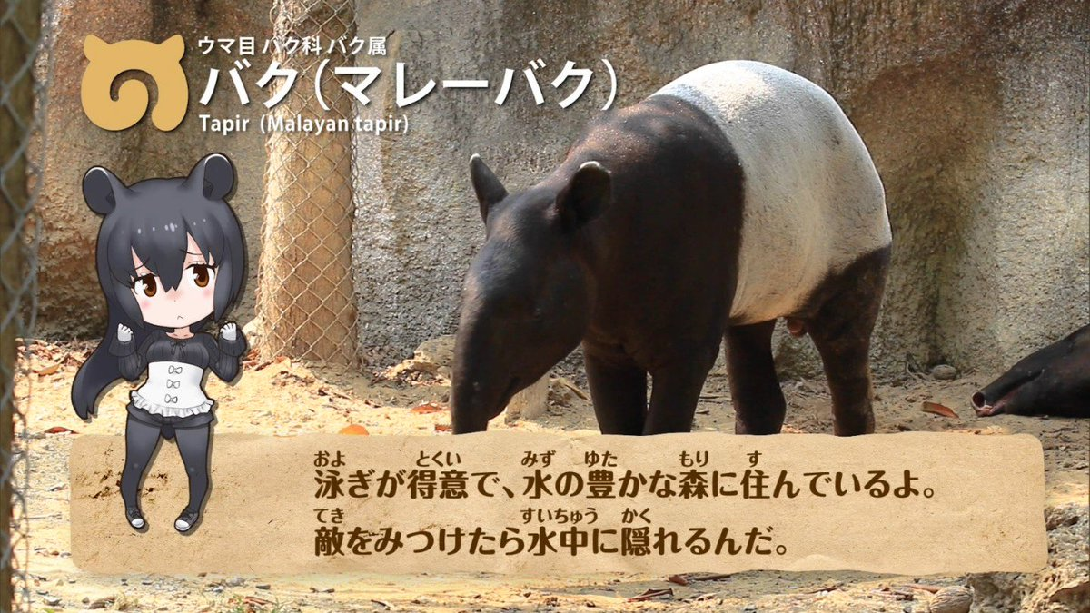 こどもずかん : 図鑑のずかん - zukan.ldblog.jp
