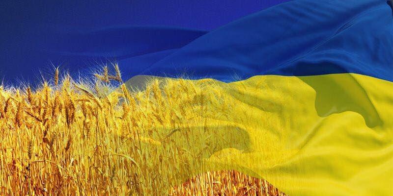 Пройдет время, и сине-желтый флаг будет поднят над всей территорией Украины: от Львова до Луганска, от Донецка до Севастополя, - Турчинов - Цензор.НЕТ 7085